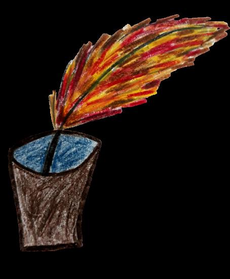 petra rohovská
